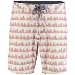 PM JEFF CANHAM BOARDSHORTS